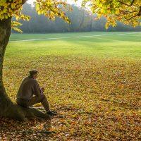Uomo seduto sotto un albero in autunno all'Englischer Garten di Monaco di Baviera, Germania