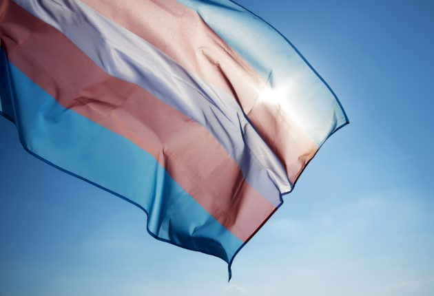 transgender pride flag waving on the blue sky